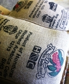 12 oz - Honduras Capucas Fair Trade Organic